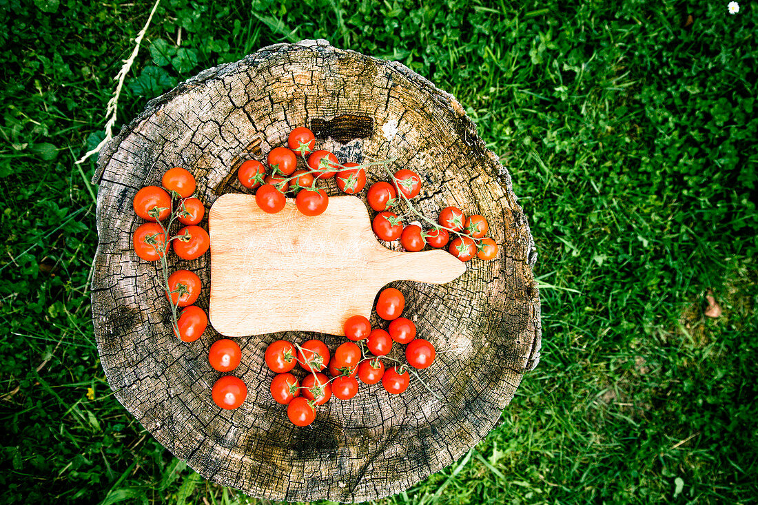 Cherry tomatoes on wood in vegetable garden