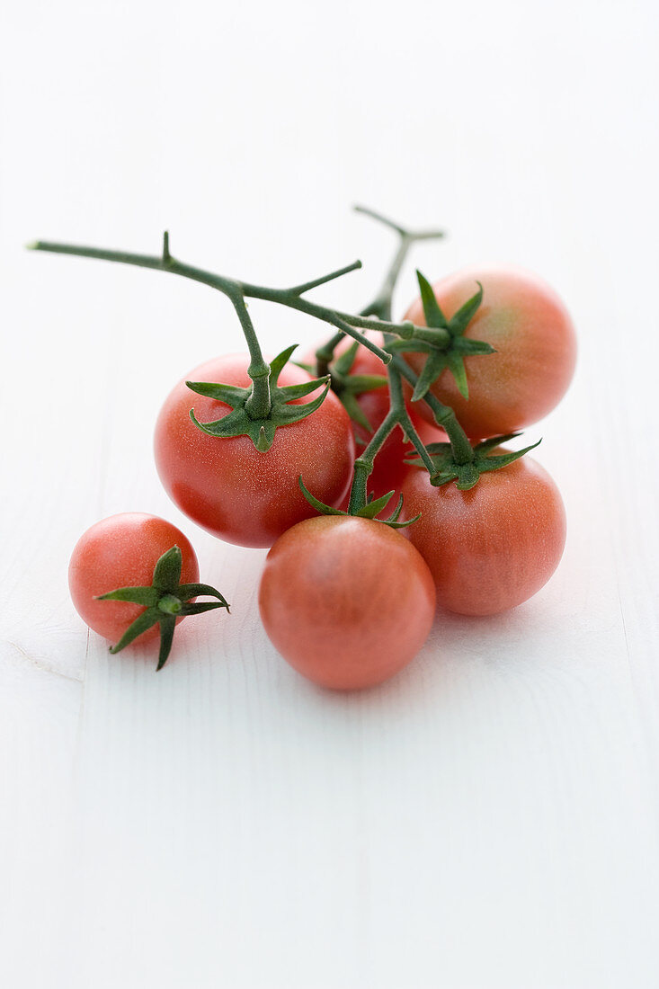 'Brandywine Cherry' (tomato variety)