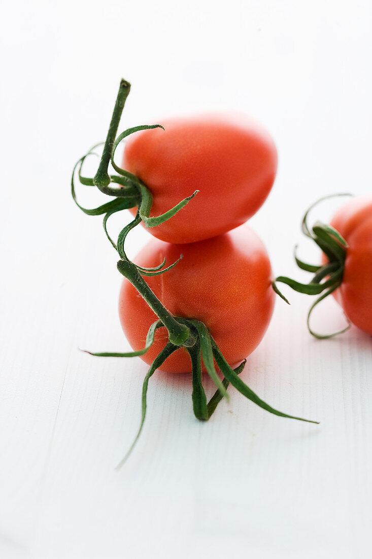 'Quadro' (tomato variety)