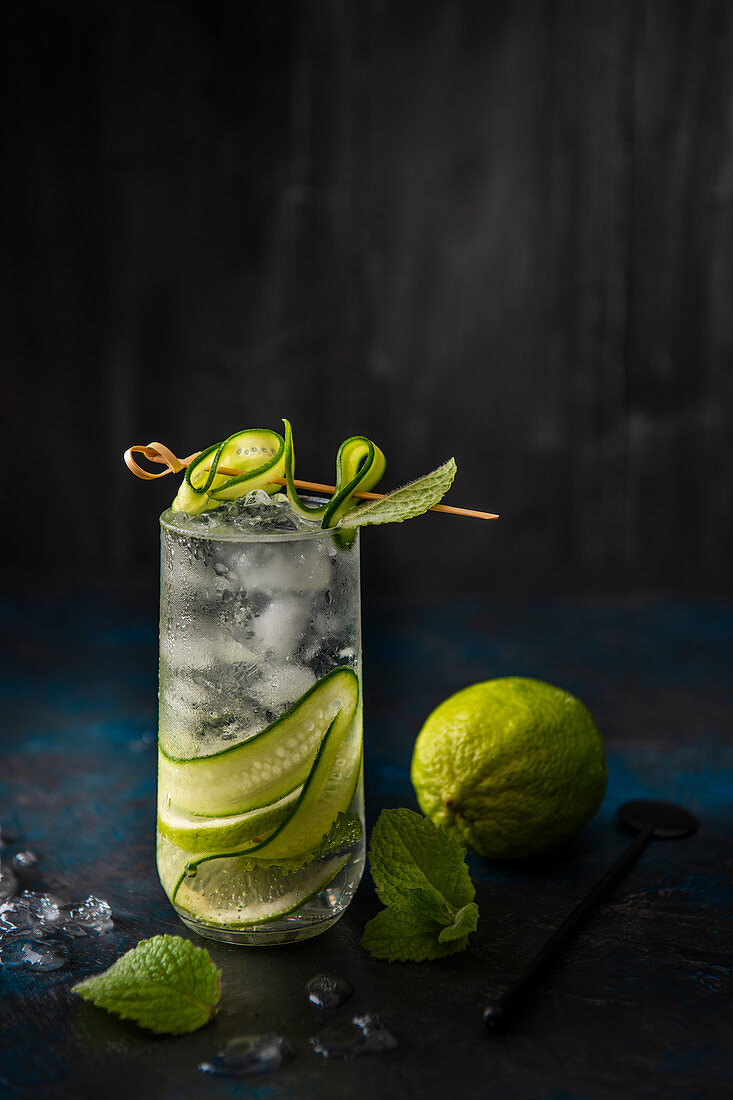 Gin and tonic long drink with cucumber and lime