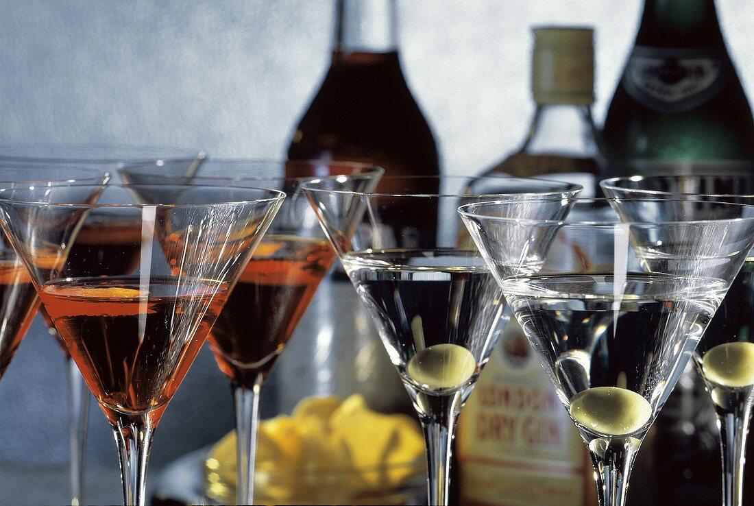 Campari Cocktails and Martinis
