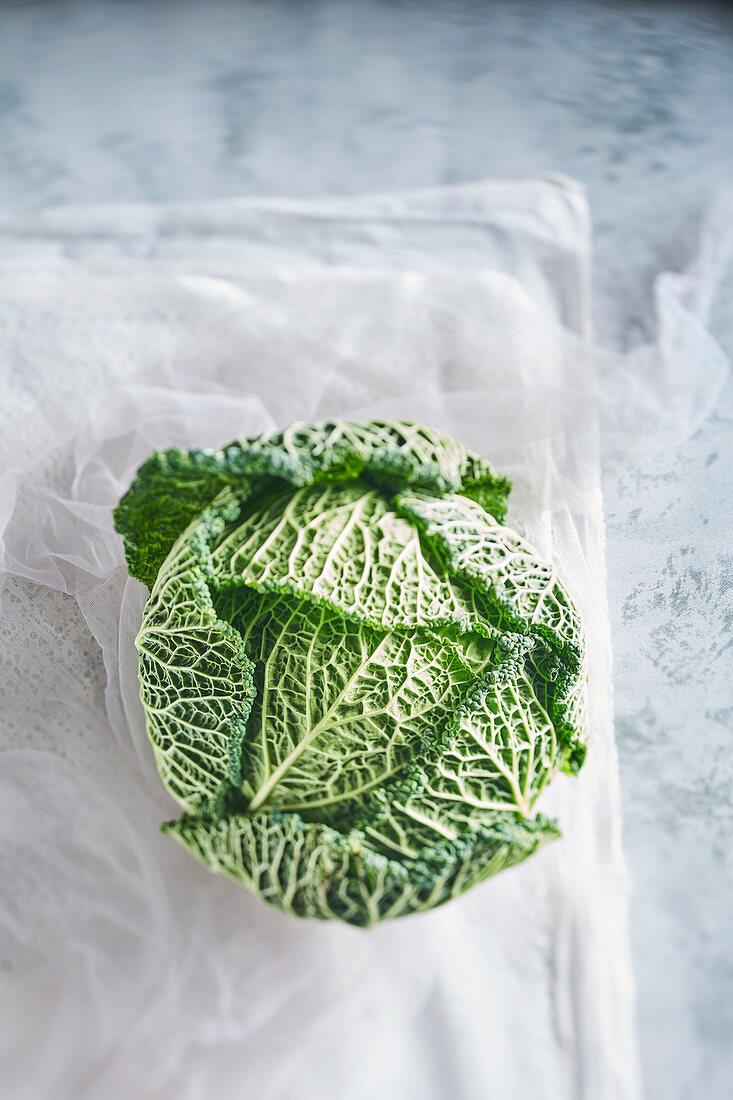 Still life of green cabbage