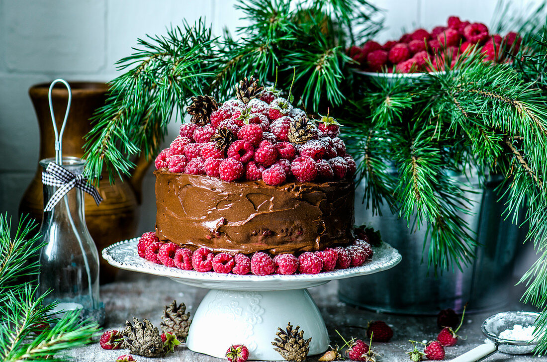 Chocolate cake with raspberry and pine branches for Christmas