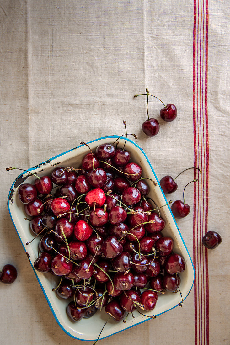 Fresh cherries in an enamel tray