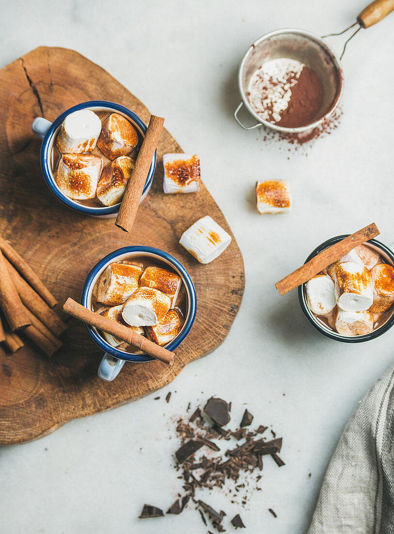 Hot chocolate in enamel mugs with cinnamon and roasted marshmallows