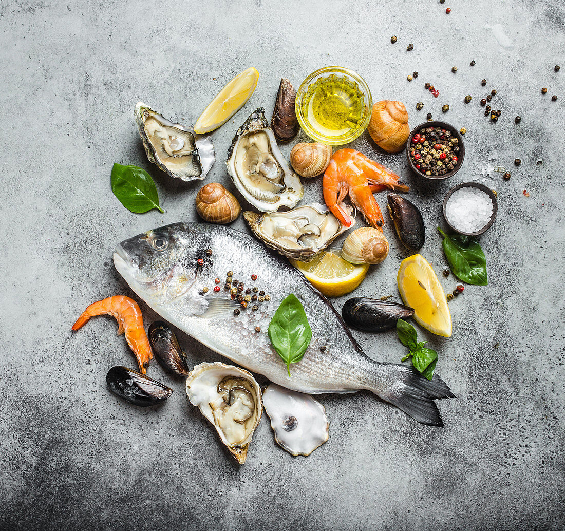 An arrangement of raw seabream, mussels, snails and prawns (seen from above)