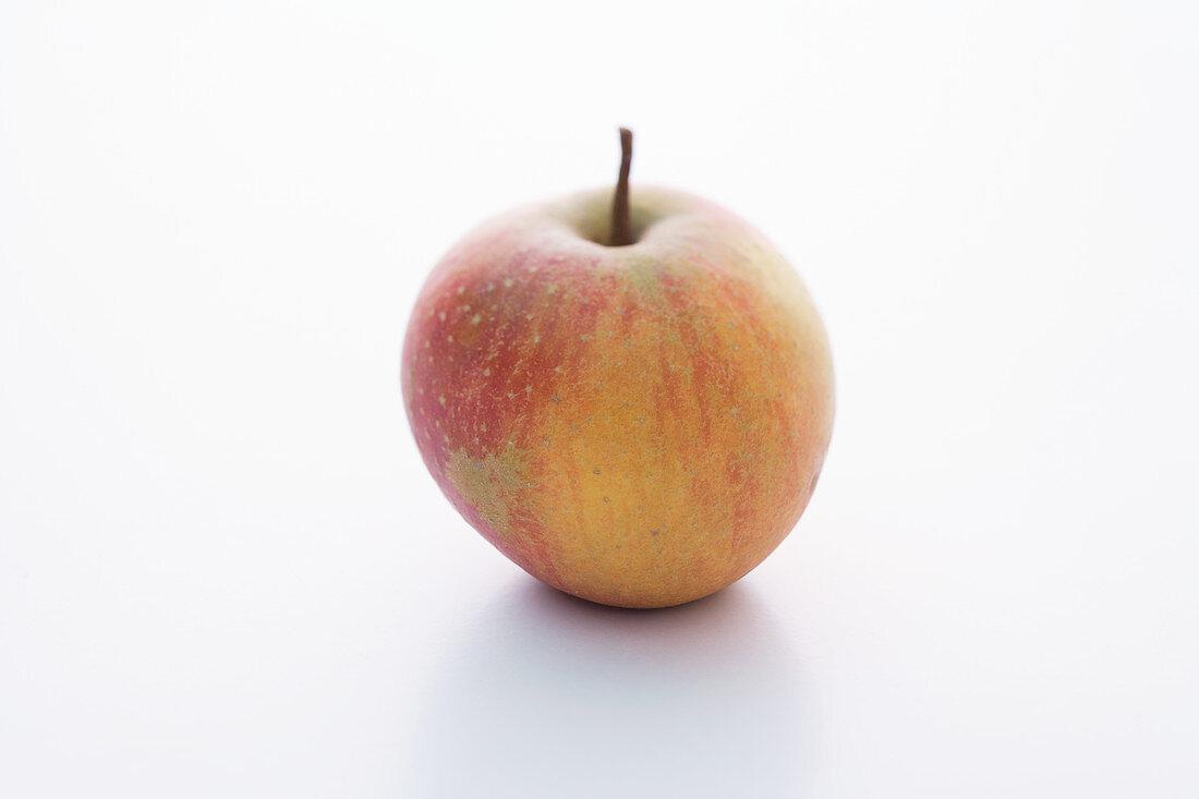 A Rubinette apple