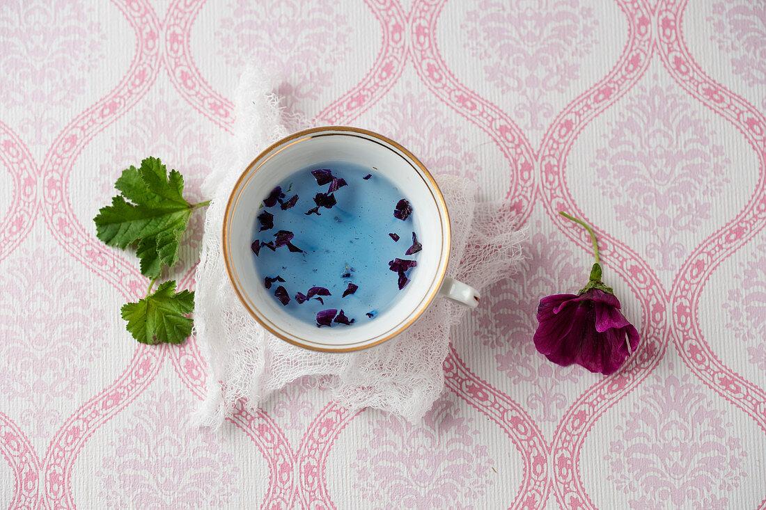 Wild mallow tea (Malva sylvestris)
