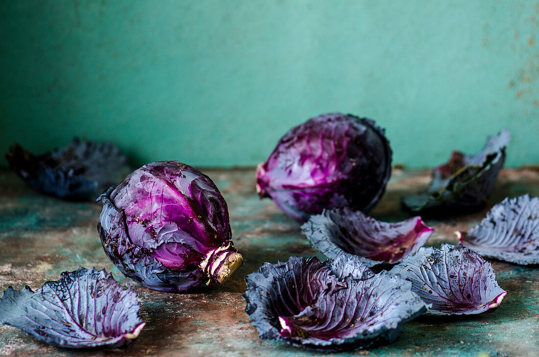Violet cabbage with leaves