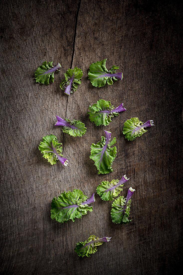 Kalette Leaves