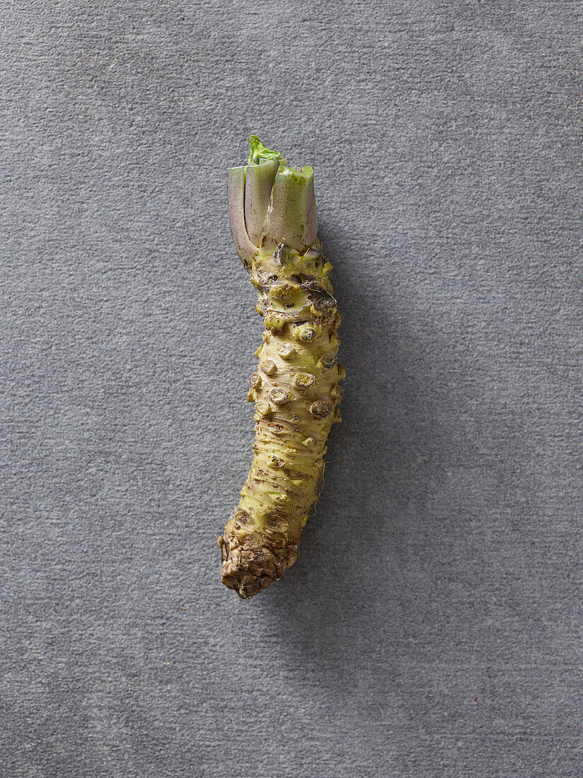 A wasabi root on a grey surface