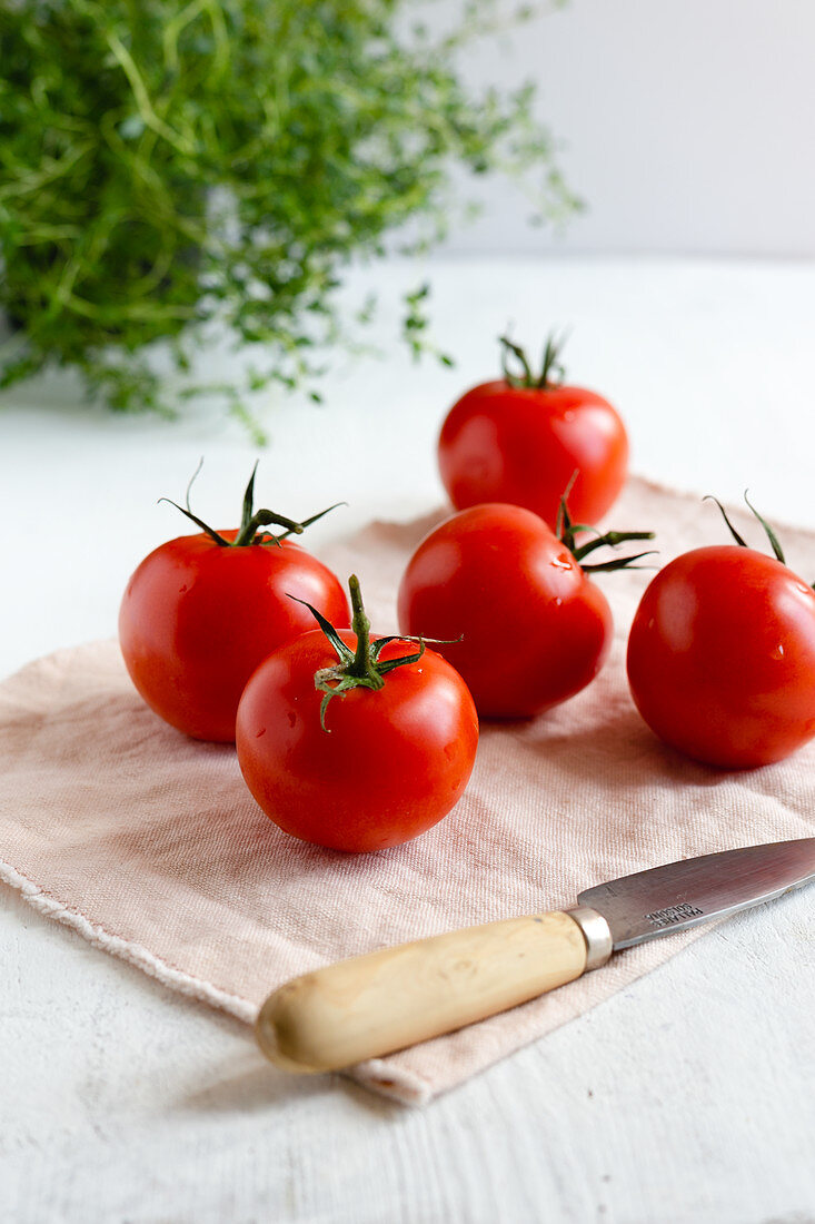 Whole tomatoes on white surface with fresh thyme at the background
