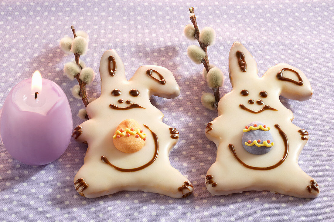 Small iced Easter bunny cookies with catkins