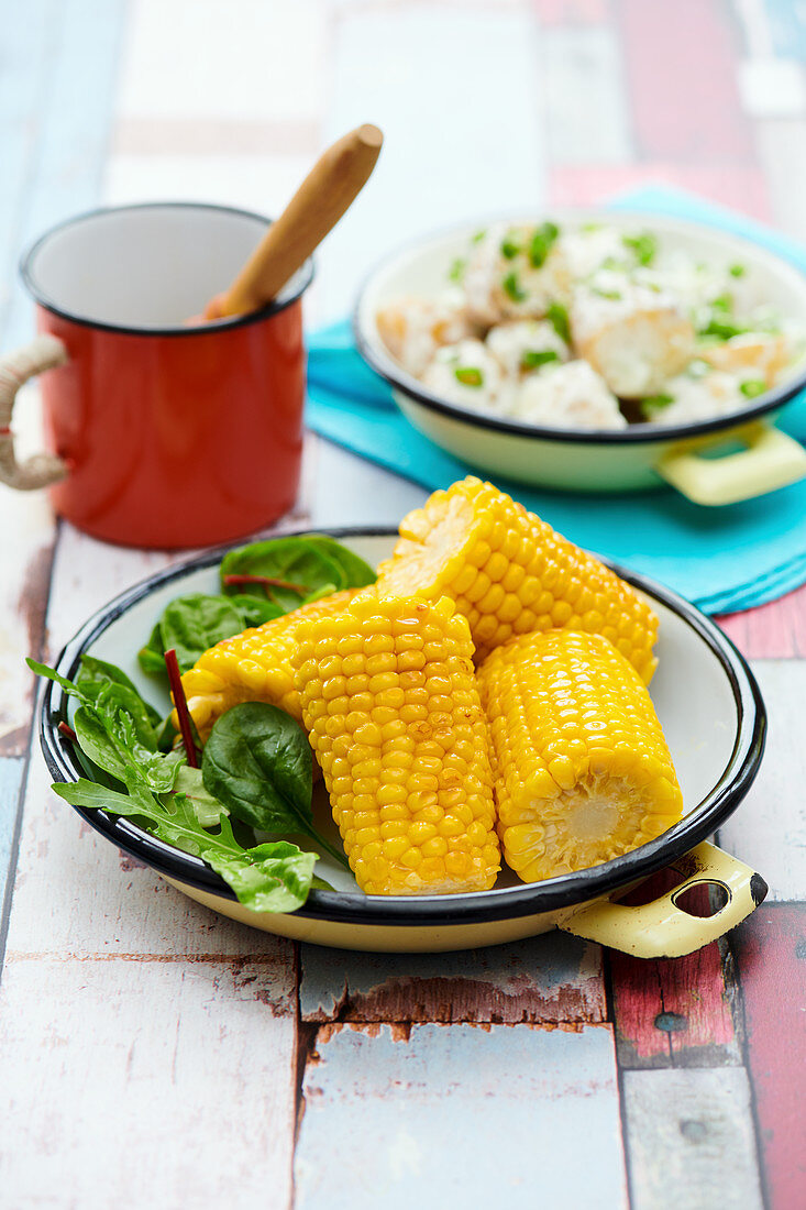 Corn on the cob for a barbecue