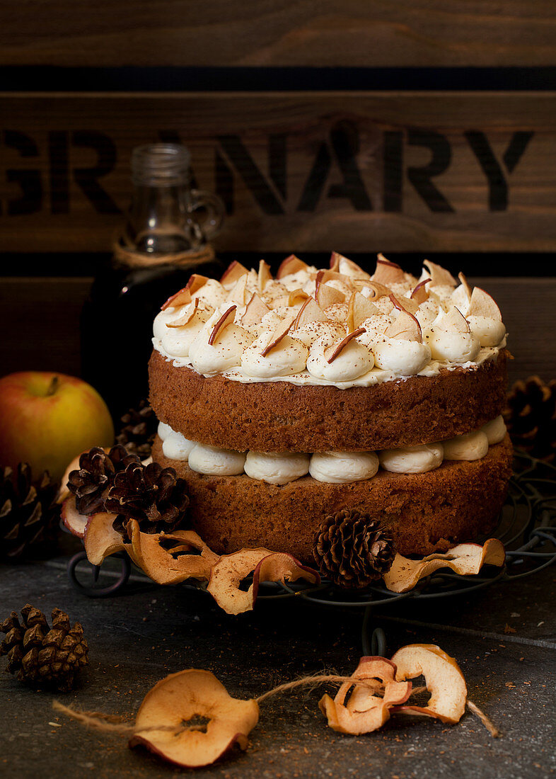 Cinnamon and Apple Cake with Dried Apple Slices