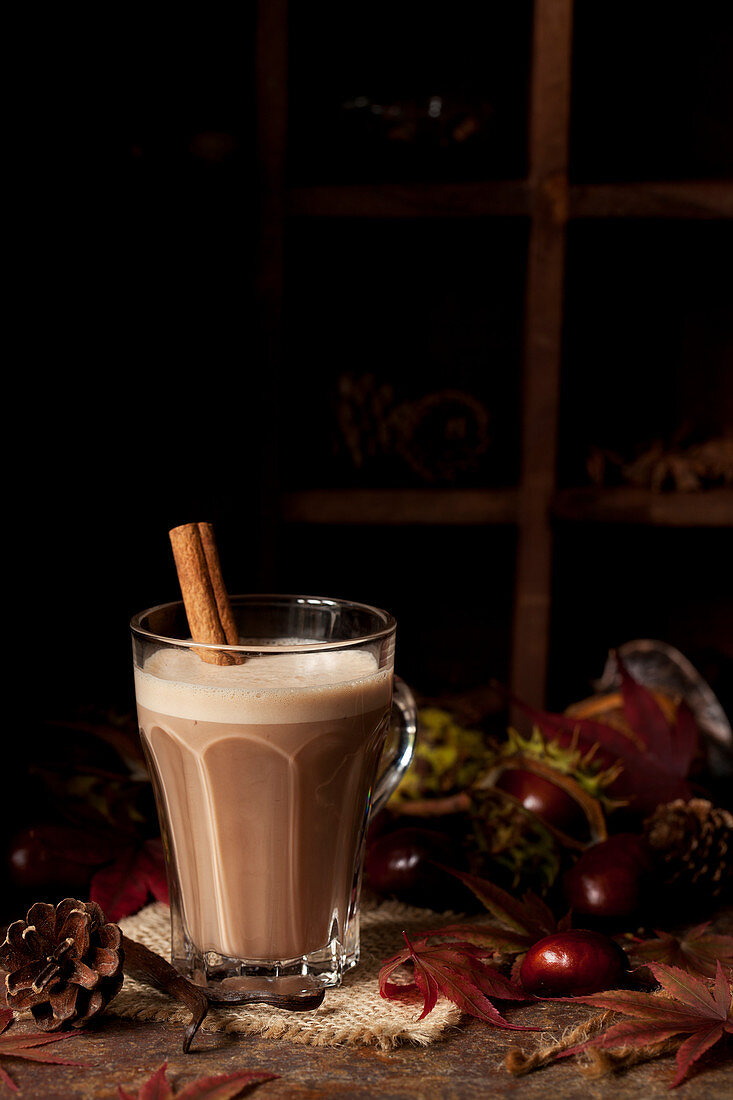 Frothy Hot Chocolate with Cinnamon in an Autumn Setting