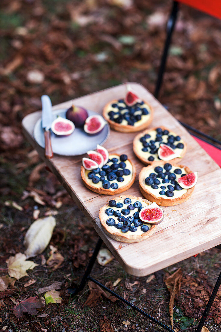 Blueberry and fig tartlets with vanilla pudding on a wooden board in an autumnal garden