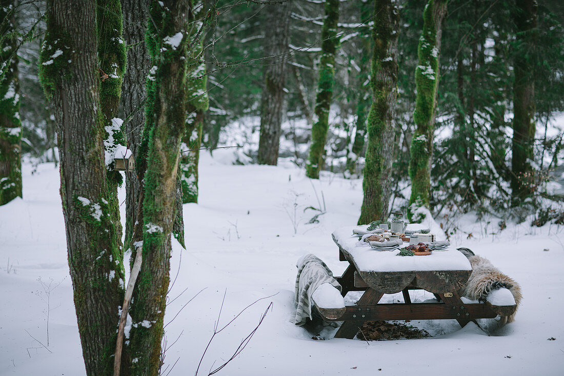 Christmas picnic in snowy forest
