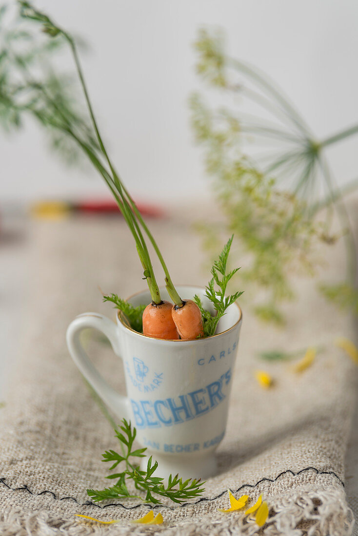 Carrots in a cup