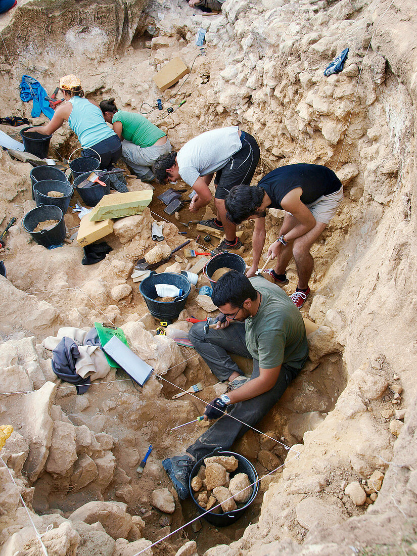 Neanderthal excavation, Pinilla del Valle