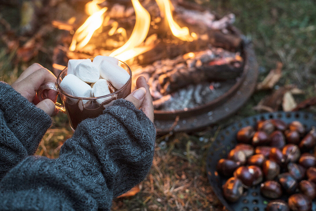 Marshmallows and roasted chestnuts at an autumnal camp fire