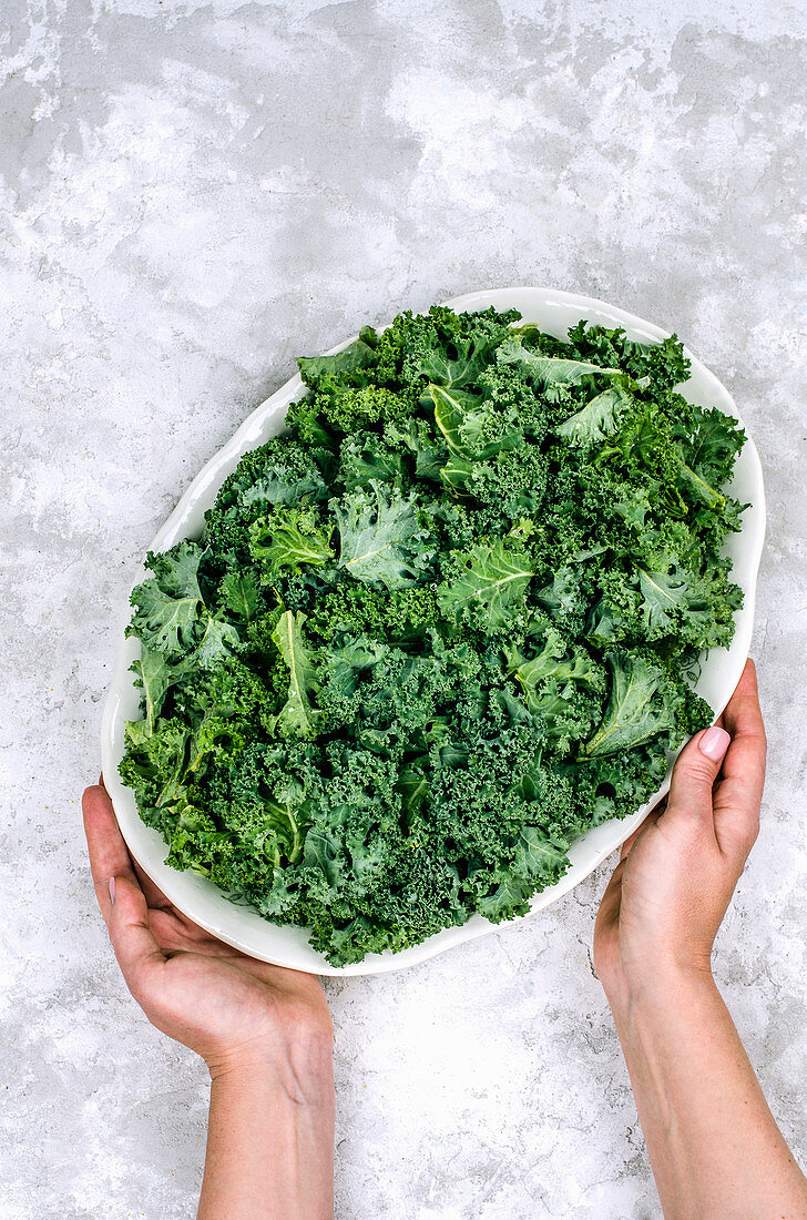 Fresh kale leaves on a dish in the hands of a girl