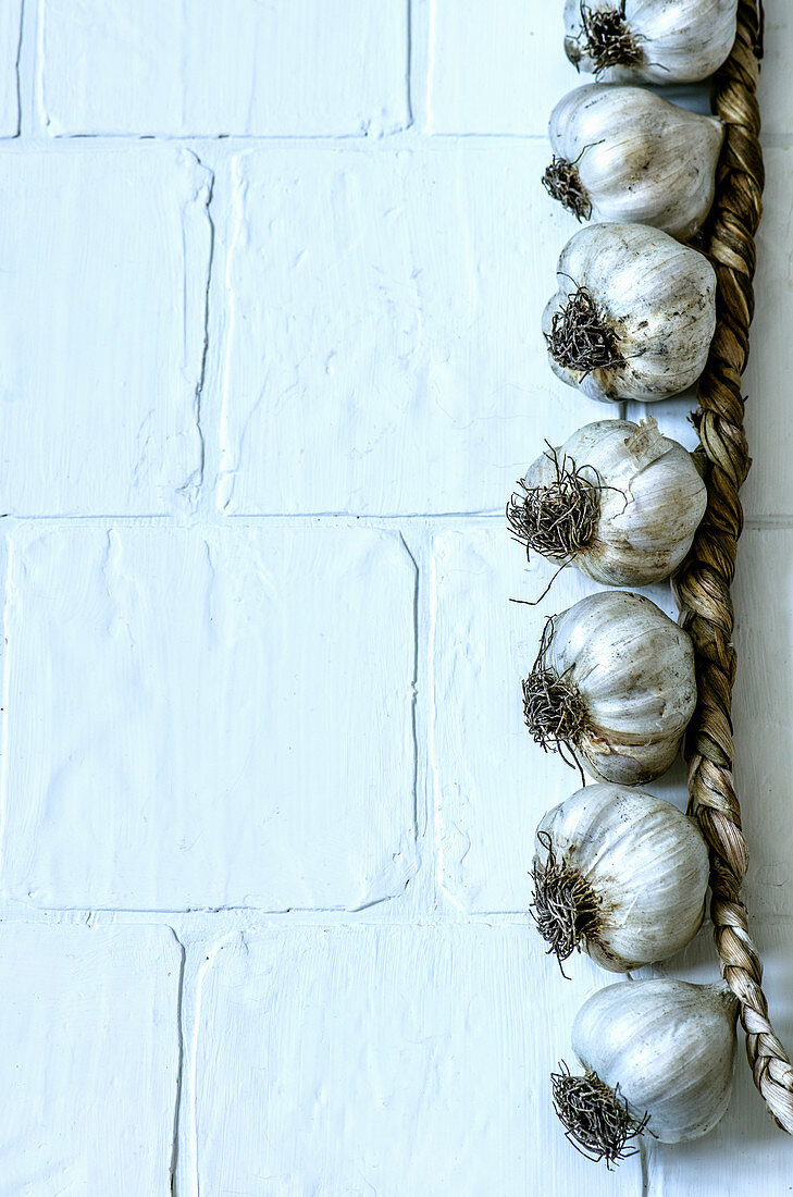 Braided dry garlic on a white background