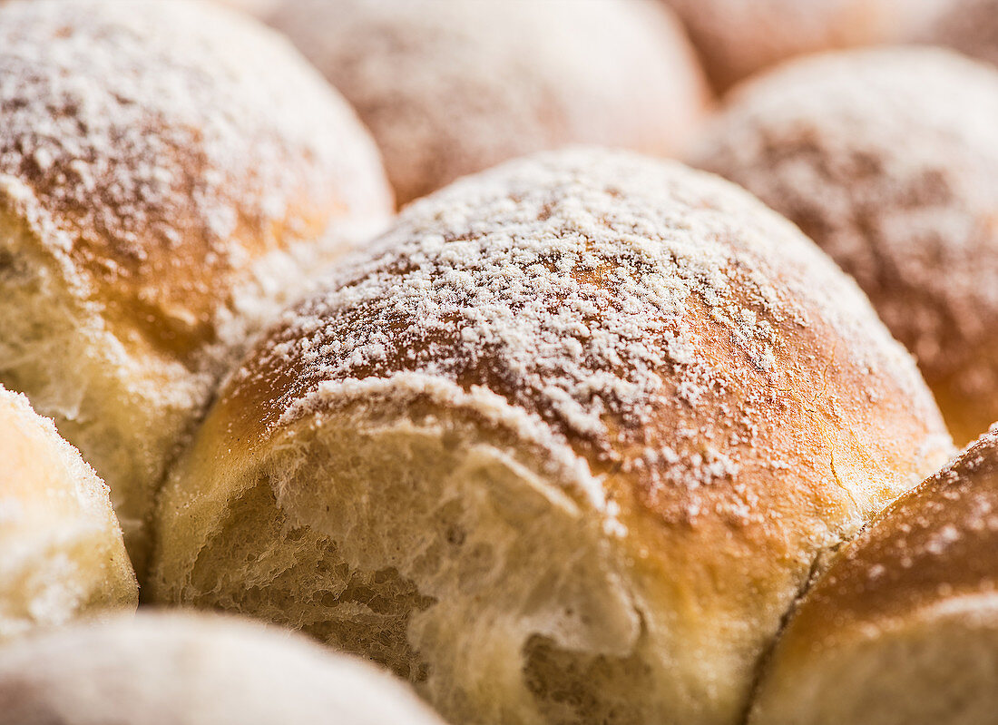 Buchteln (baked, sweet yeast dumplings) with icing sugar (close-up)