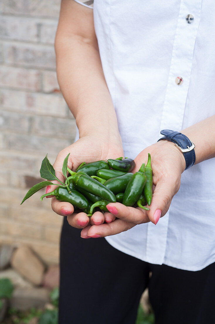 A woman holding green chili peppers