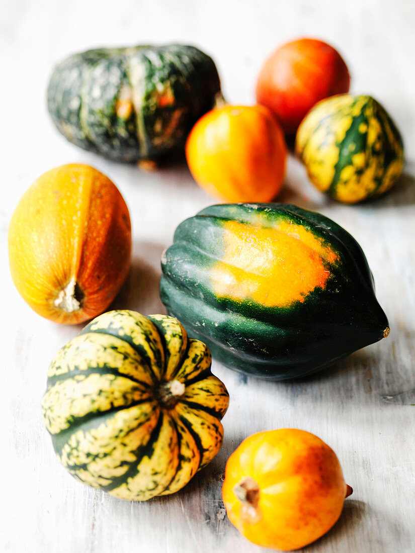 Selection of different autumn winter sqaushes incl acorn squash kabocha spaghetti squash sweet dumpling carnival and golden nugget