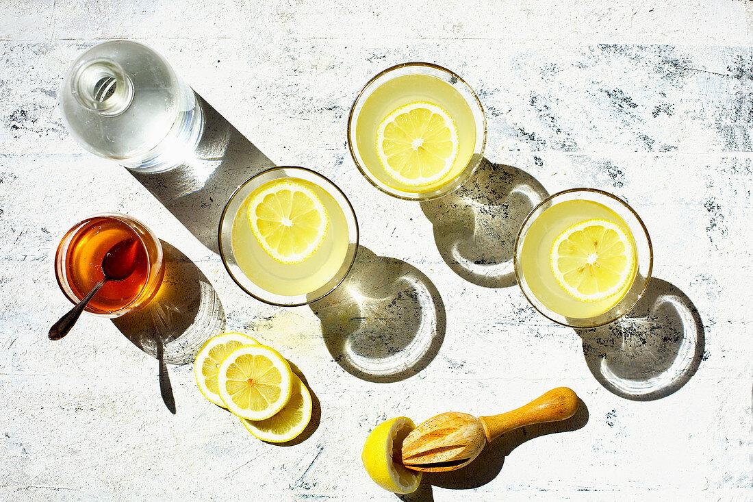 Bee's Knees Cocktail served in vintage glassware