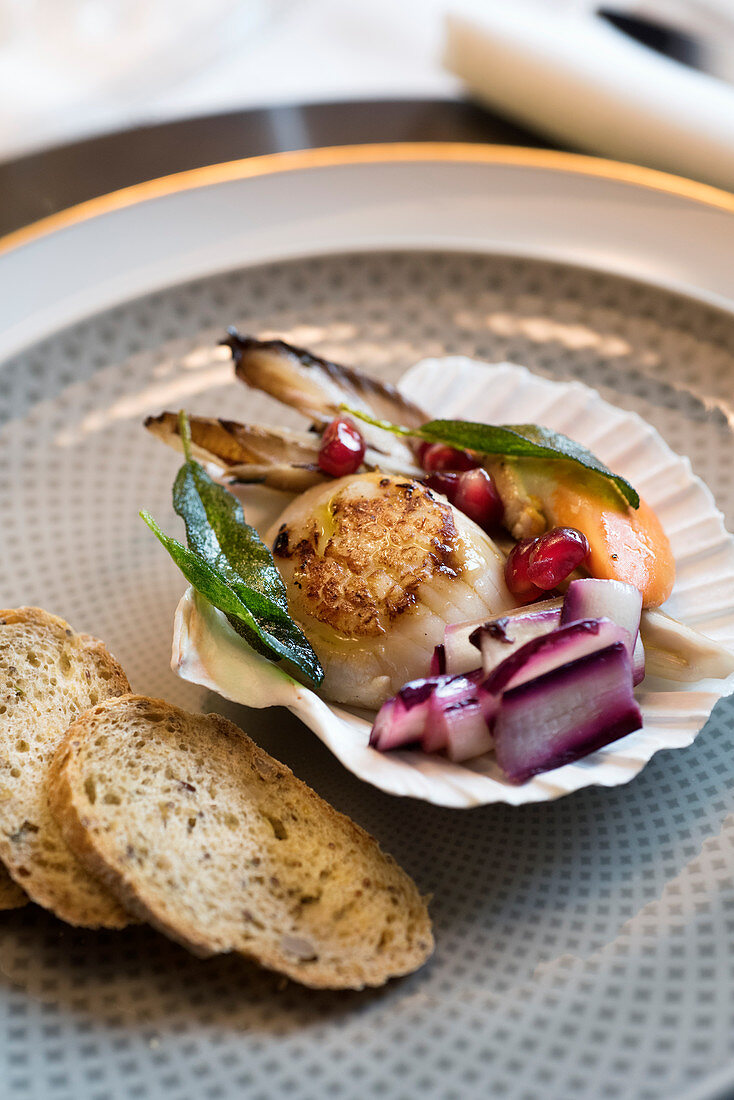 Scallops with radicchio, chicory, herbs and pomegranate seeds in a shell