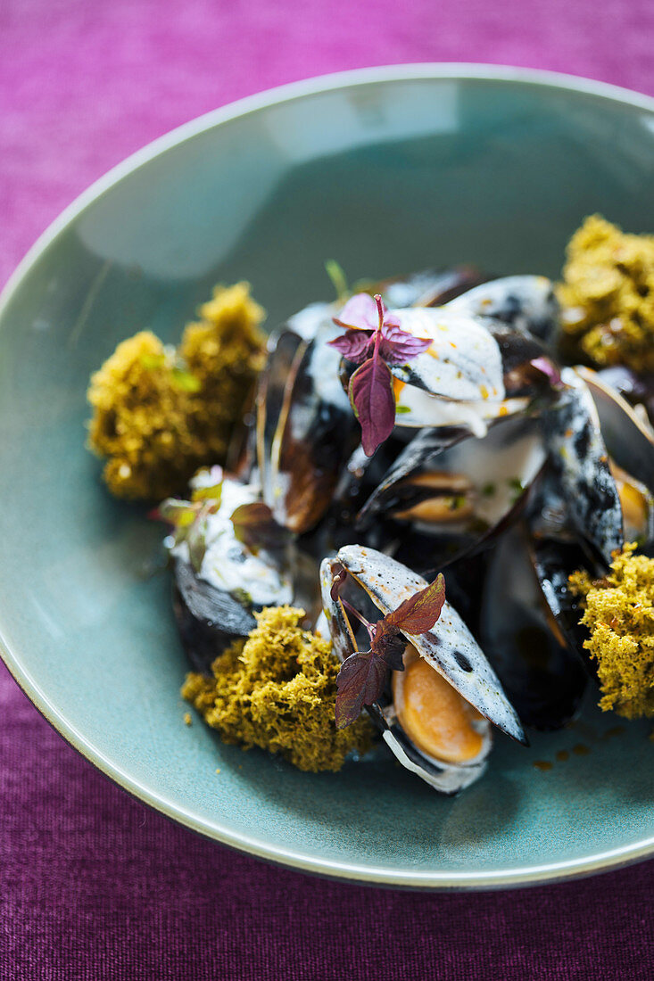 Mussels with sauce and algae