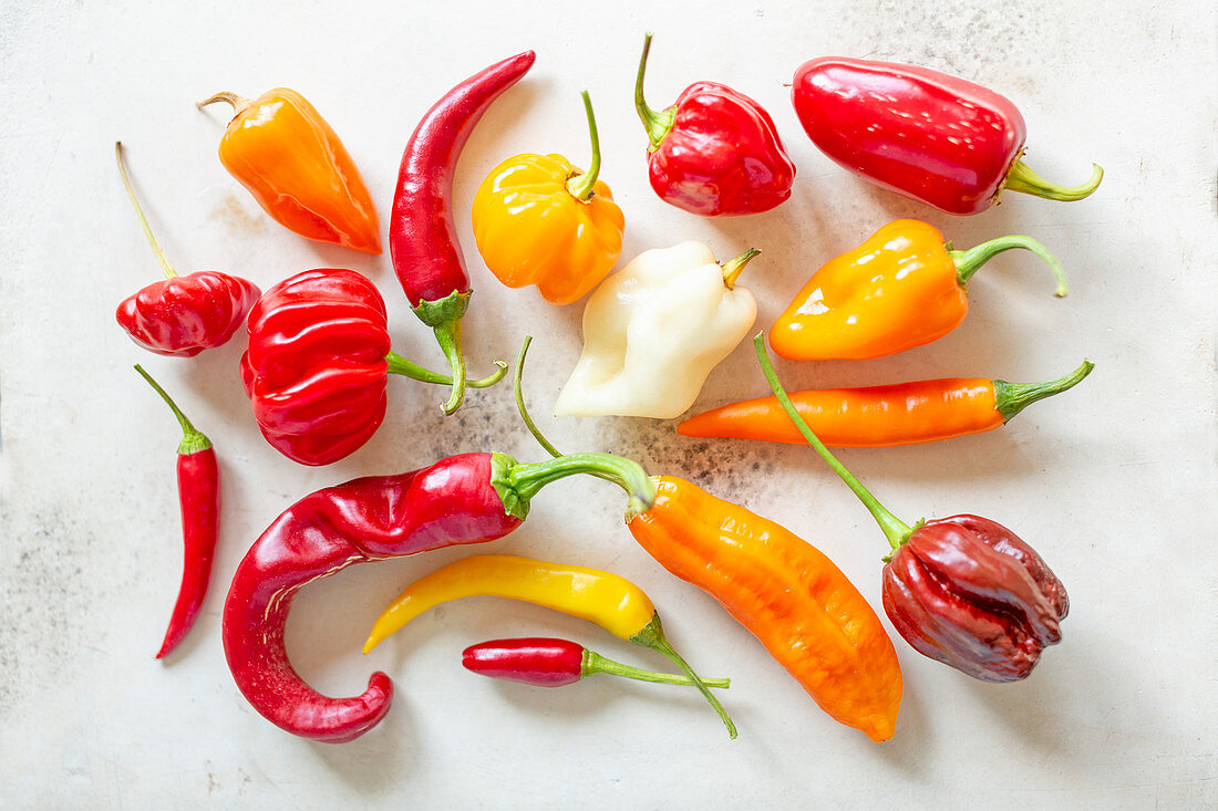 Assorted Fresh Peppers on White