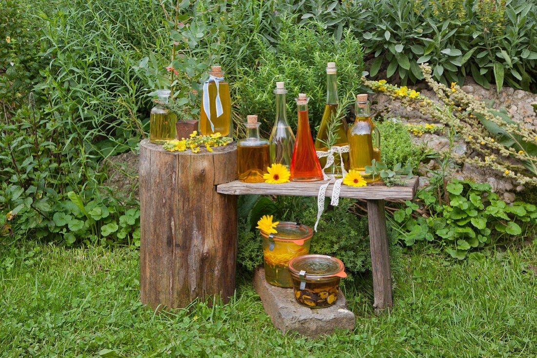 Various homemade oils on a wooden table in a farm garden