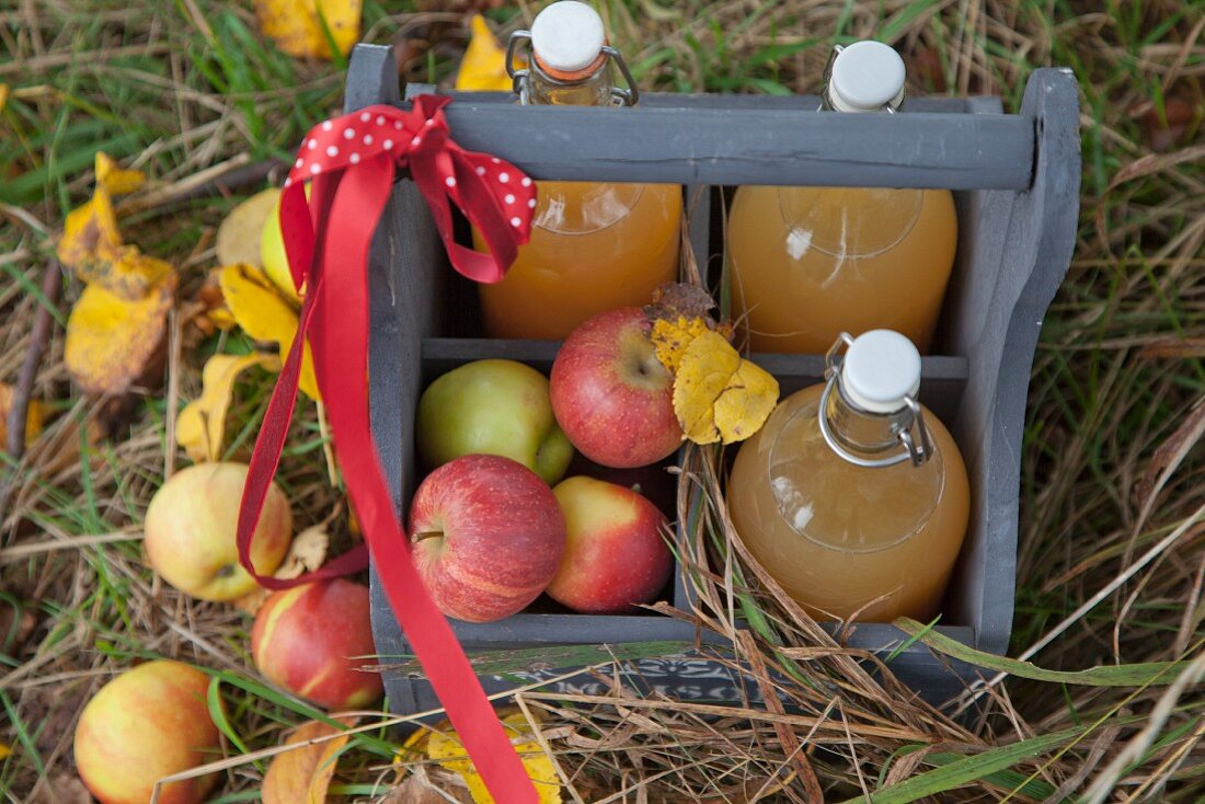 Homemade apple juice and fresh apples in a bottle holder