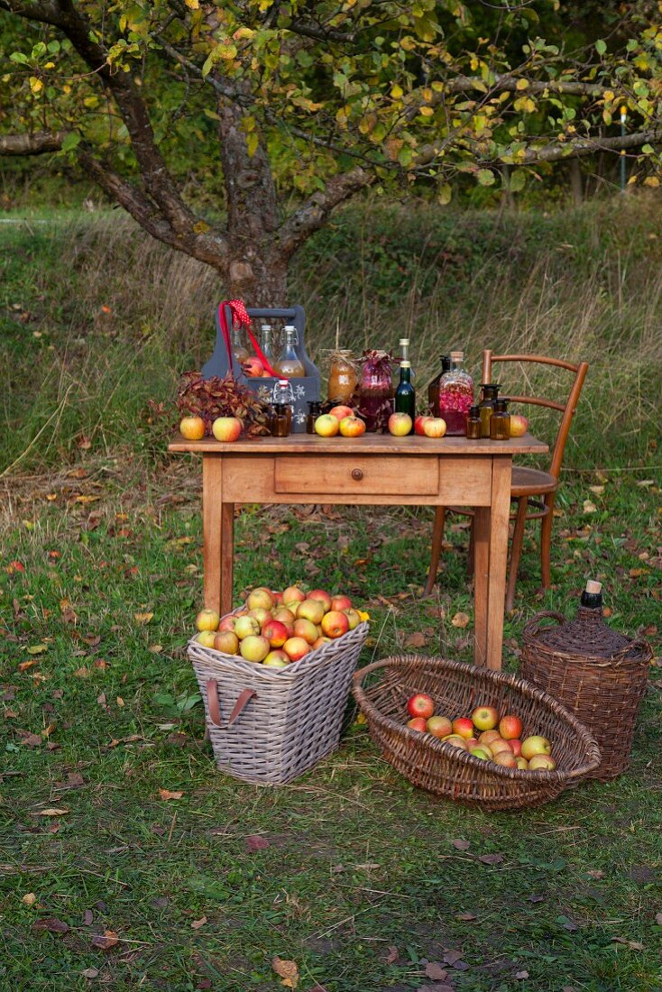 A wooden table in a garden with fresh apples and apple products