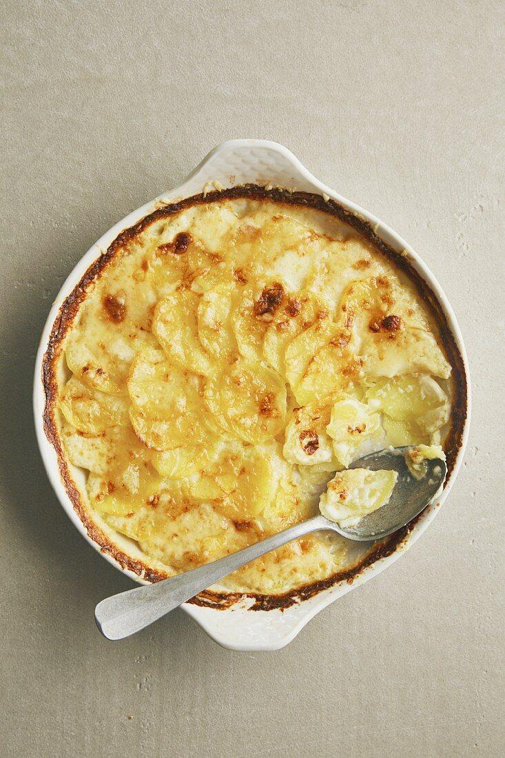 Classic potato gratin with cream and alpine cheese