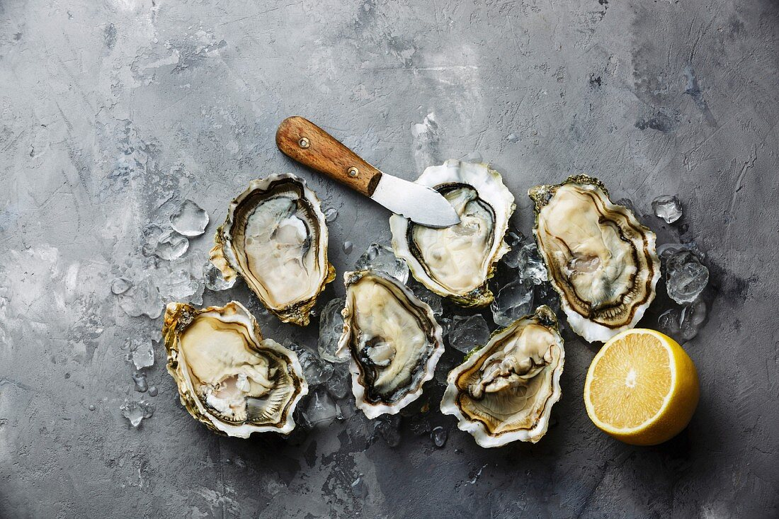 Opened Oysters Fines de Claire and lemon on gray concrete texture background