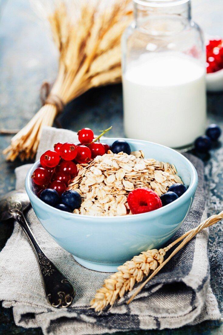 Gesundes Frühstück mit Haferfllockenmüsli, Beeren und Milch