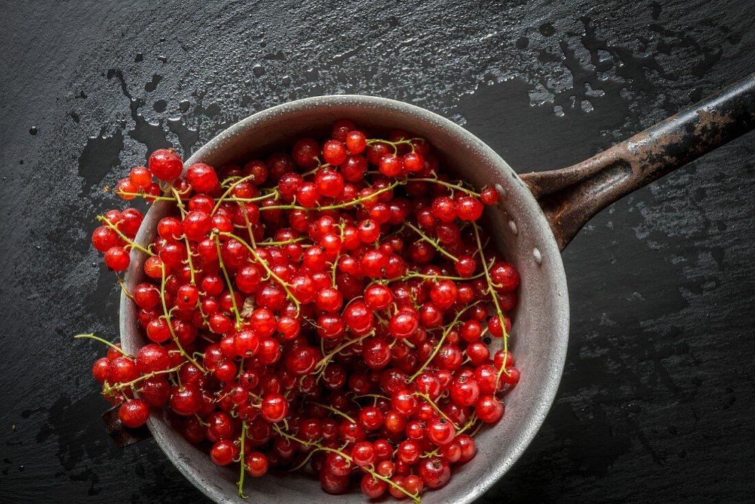 Rote Johannisbeeren in Vintage-Sieb auf schwarzem Schieferuntergrund