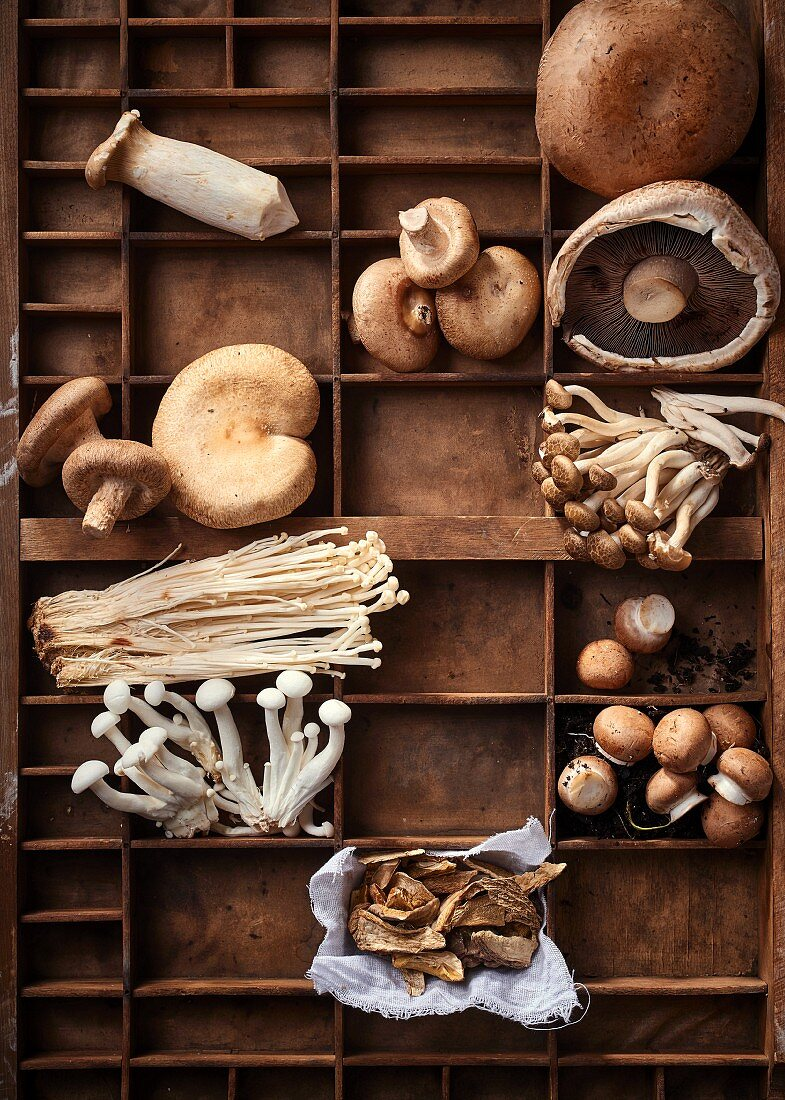 Wooden box with different types of mushrooms