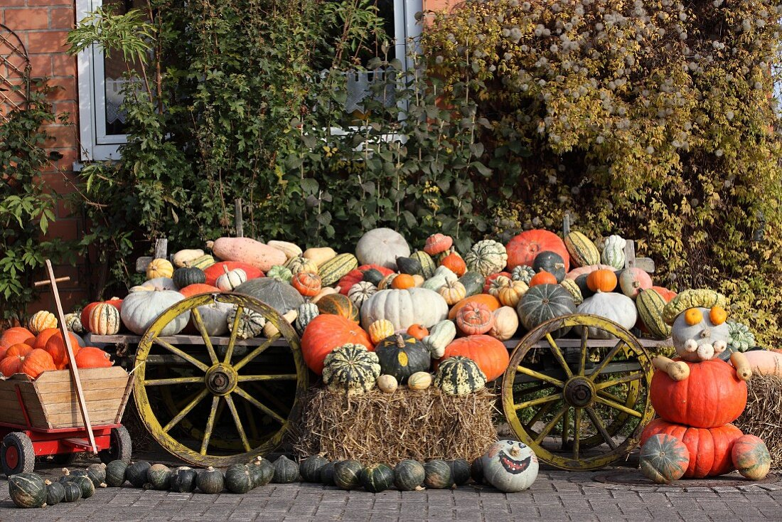 Many different pumpkins on an old trailer
