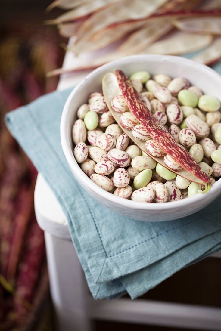 Borlotti Beans in White Bowl on Chair