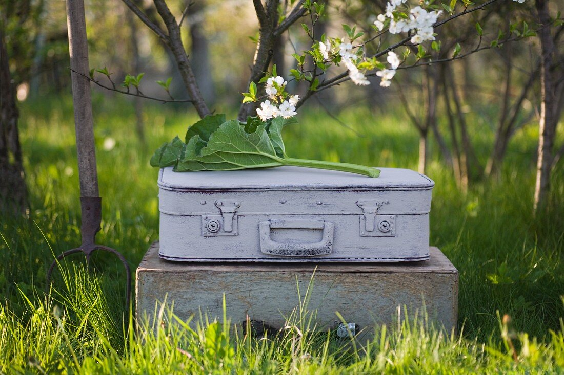 A grey suitcase with a flower branch and a rhubarb leaf on a wooden box