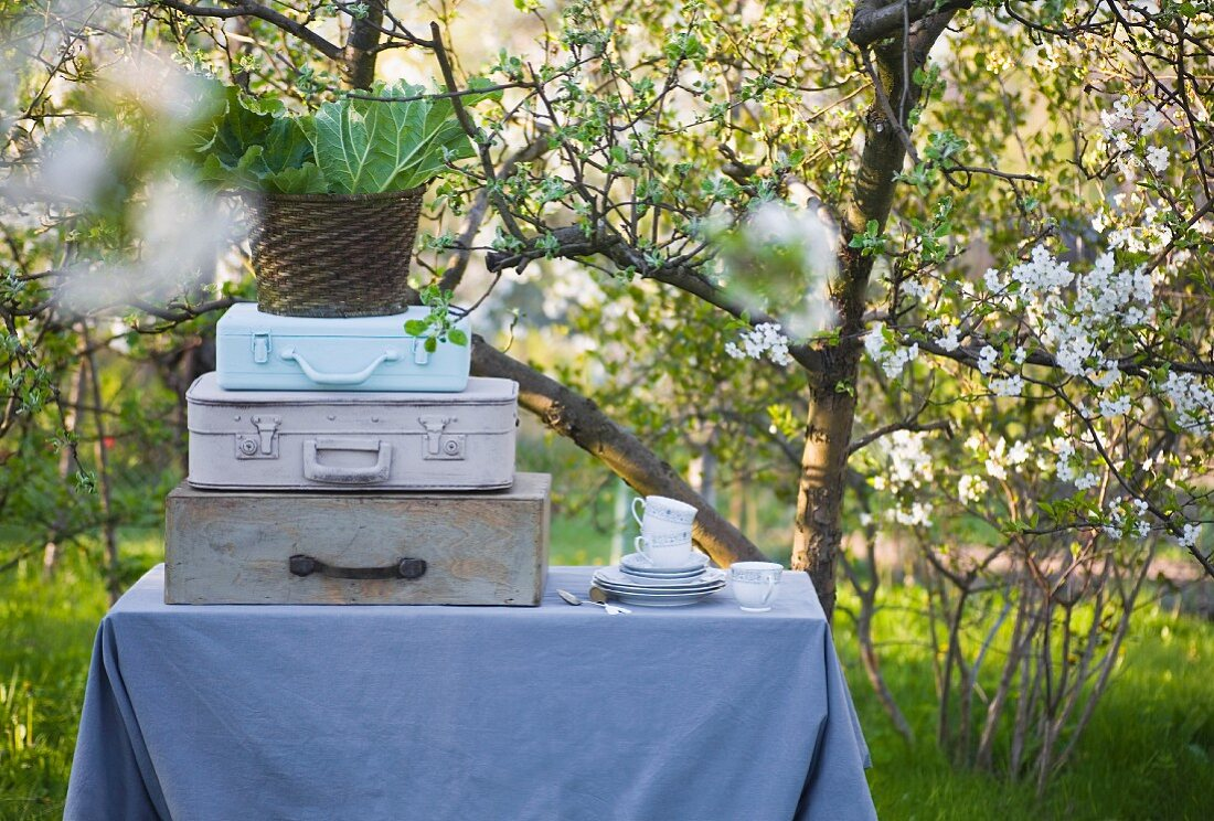 Gartentisch mit grauer Tischdecke, gestapelten Koffern, Geschirrstapel und einem Korb voller Rhabarberblätter