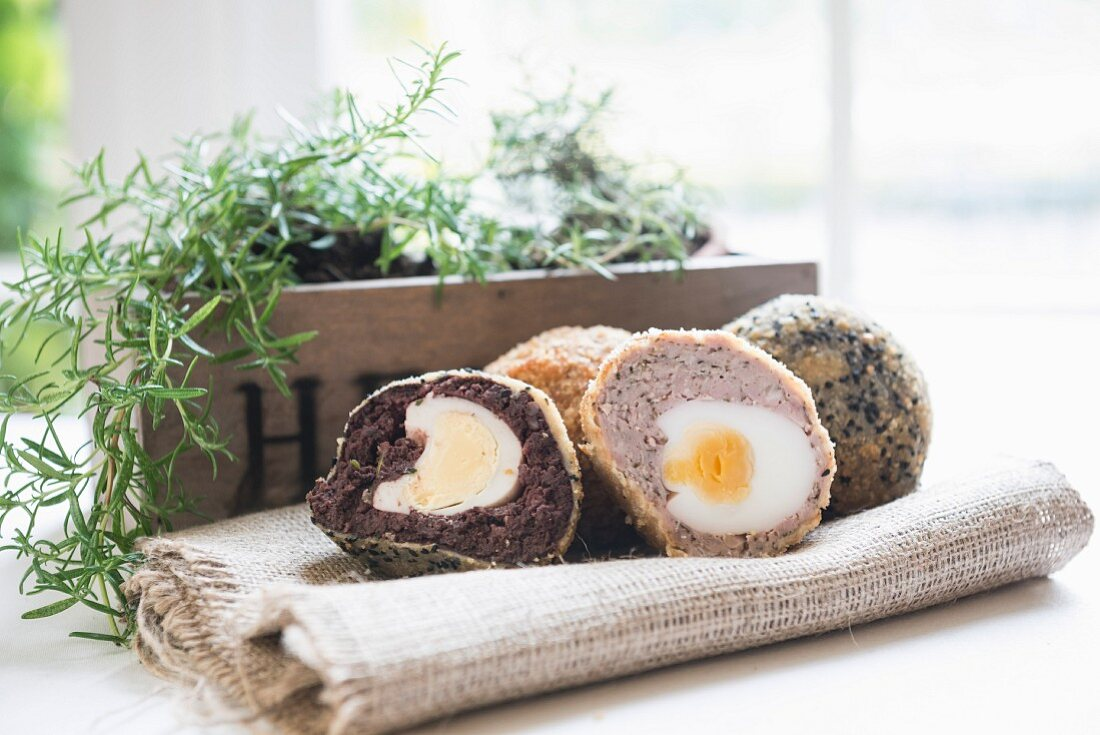 Scotch eggs and herbs