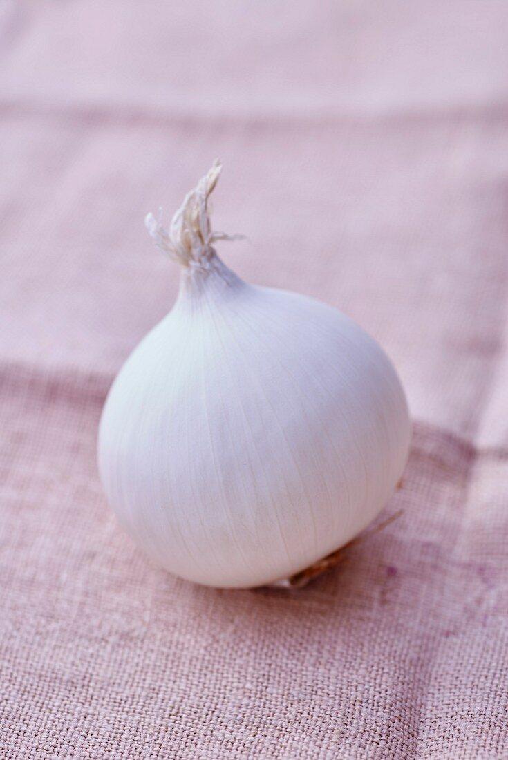A white onion on a linen cloth