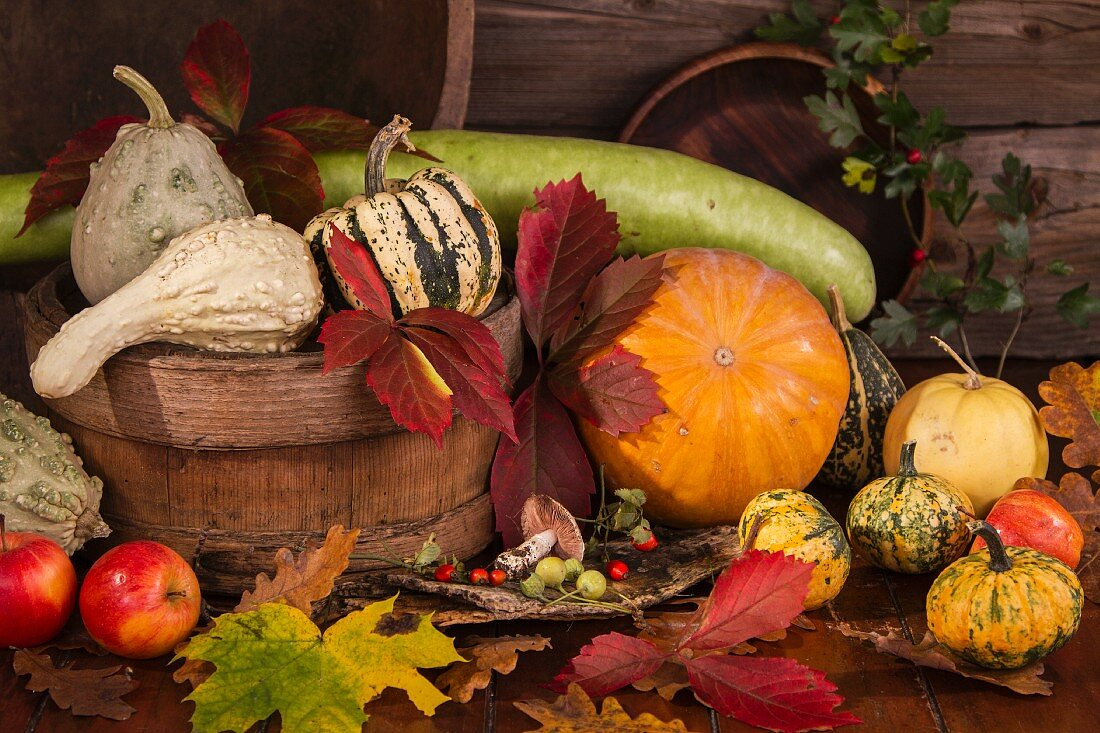 Autumn Still Life with Pumpkins, Gourds and Corn