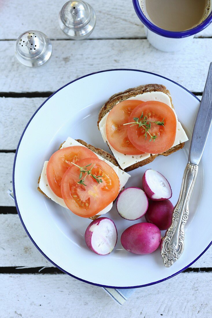 Simple breakfast-sandwich with cheese, tomato and radish